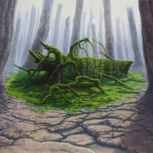 Arteclat - Stone forest in spring Tomasz Alen Kopera