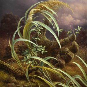Arteclat - The Oak and the Reed Tomasz Alen Kopera